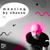 wrosound_meeting_by_chance-17482